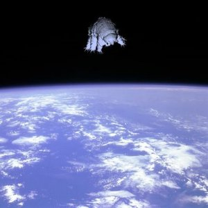 Tardigrades yang dilepas di luar angkasa